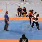 Διασυλλογικό πρωτάθλημα qingda Ε.Ο wushu kung-fu 16-2-2014