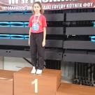 17ο πανελλήνιο πρωτάθλημα wushu kung-fu.